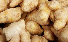 生姜酵素シロップ 画像
